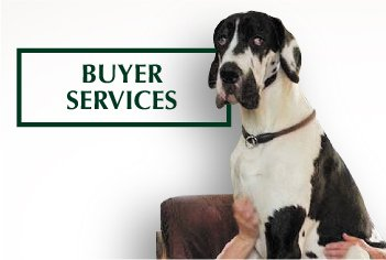 Buyer Services - Mobile
